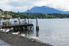 Lac de la ZM à Zurich 1 photo stock