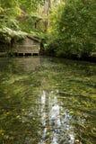 lac de maison de bateau Photographie stock libre de droits