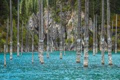 Lac de montagne de Kaindy dans Kazakhstan Photographie stock