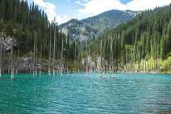 Lac de montagne de Kolsay dans Kazakhstan Images stock