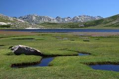 Lac de Nino , Corsica Royalty Free Stock Photography