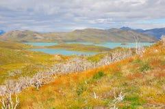 Lac de parc national de Torres del Paine Images libres de droits