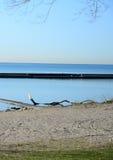 Lac de paysage d'Ontario Photos libres de droits