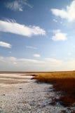 Lac de sel de côte. sable salé. Été chaud. Images libres de droits