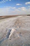 Lac de sel de côte. sable salé. Photo stock
