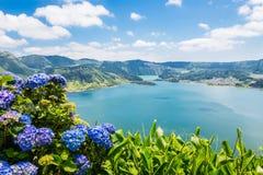 Lac de Sete Cidades avec le hortensia, Açores Photographie stock libre de droits