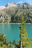 Lac de Tseuzier in Switzerland. Single fir half without leaves on the Lac de Tseuzier in Switzerland Royalty Free Stock Photography