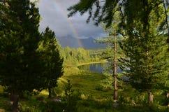 Lac des bois images stock