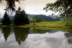 Lac Des Joncs in Switzerland. Reflections on Lac Des Joncs in Switzerland Royalty Free Stock Photography