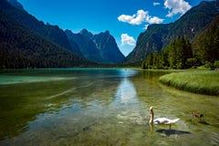 Lac Dobbiaco dans les dolomites, Italie Photos libres de droits