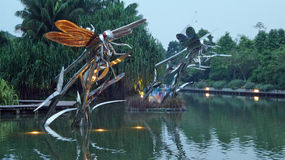 Lac dragonfly Photo stock