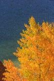Lac echo Images libres de droits