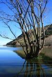 Lac Ellesmere Photographie stock libre de droits