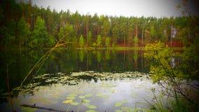 Lac Elovoe Images libres de droits
