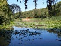 Lac Eminescu Photographie stock libre de droits