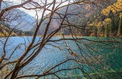 Lac en bambou arrow, Jiuzhaigou, au nord de province de Sichuan, la Chine images stock