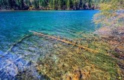 Lac en bambou arrow, Jiuzhaigou, au nord de province de Sichuan, la Chine photos stock