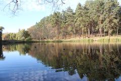 Lac en parc Photographie stock libre de droits