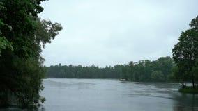 Lac en parc banque de vidéos