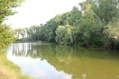 Lac en parc Photo libre de droits