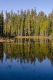 Lac en stationnement national de Yosemite image stock
