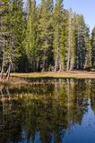 Lac en stationnement national de Yosemite photo stock
