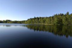 Lac ensoleillé avec des arbres réfléchissant sur la droite image libre de droits