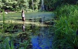 Lac envahi avec l'herbe et le vieux tronçon Image stock