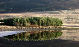 Lac et arbres Image libre de droits
