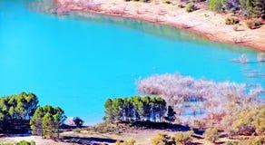 Lac et arbres Photo stock