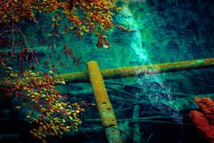 Lac et arbres en vallée de Jiuzhaigou, Sichuan, Chine Photographie stock libre de droits