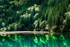 Lac et arbres en vallée de Jiuzhaigou, Sichuan, Chine Photos stock