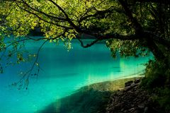 Lac et arbres en vallée de Jiuzhaigou, Sichuan, Chine photographie stock