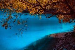 Lac et arbres en vallée de Jiuzhaigou, Sichuan, Chine Images libres de droits