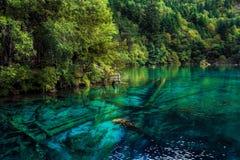 Lac et arbres en vallée de Jiuzhaigou, Sichuan, Chine Photos libres de droits