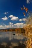 Lac et ciel bleu Photos stock