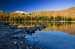 Lac et forêt photo stock
