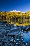 Lac et forêt photographie stock libre de droits