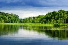 Lac et forêt. Image libre de droits