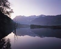 Lac et forêt images stock