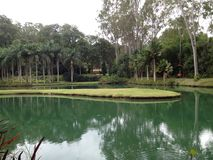 Lac et jardin botanique à l'institut d'Inhotim, dans Brumadinho, MG - le Brésil photographie stock libre de droits