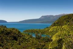 Lac et Montain - Tarawera Image stock