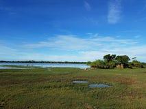 Lac et paysage de parc national Sri Lanka images stock