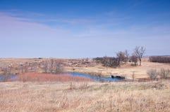 Lac et prairie aux monticules bleus Photographie stock