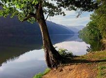 Lac et réflexion photo libre de droits