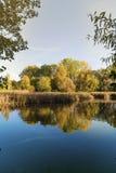 Lac et scène jaune et orange d'arbres de feuillage d'automne avec la réflexion dans l'eau Photos libres de droits