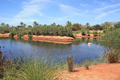 Lac et stationnement tropical en Espagne Photos stock