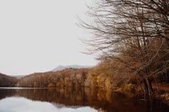 Lac et tresse en Autumn Forest image libre de droits