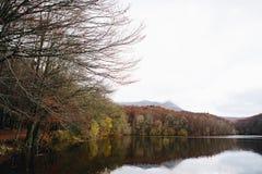Lac et tresse en Autumn Forest photo stock