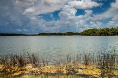 Lac everglades photos stock